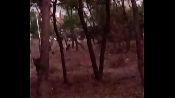 aunti fource fucked Kerala aunty open bathing hidbbbbden video