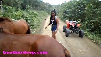 fucked horse girl2 Desi mosi ki chudie hd